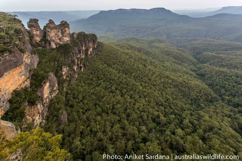The Three Sisters is an iconic geological formation in the Blue Mountains