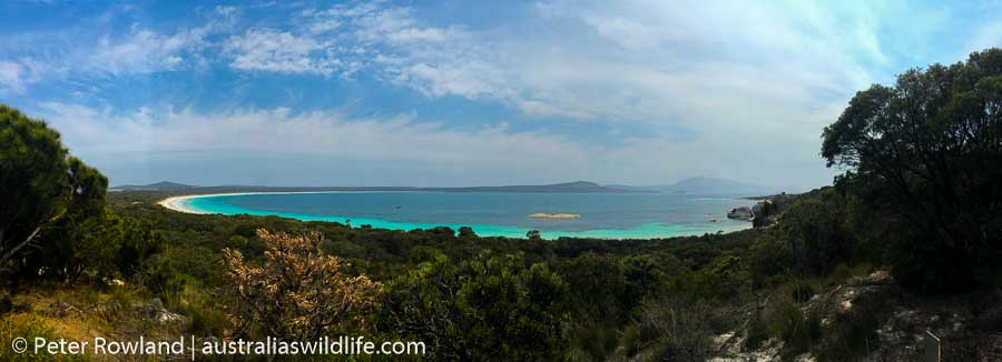 A panorama view of Two People's Bay in Western Australia