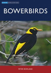 Front cover of Bowerbirds Book by Peter Rowland