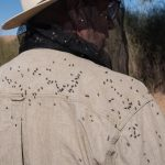 Person with bush flies on back and fly net over head