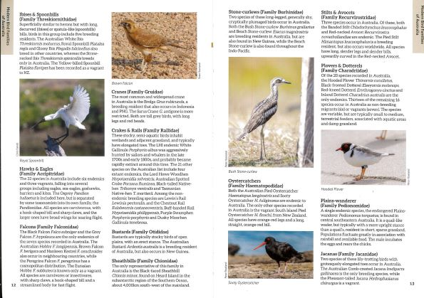 Screenshot of Australia's Birdwatching Megaspots bird book page showing text and images about Modern Australian Bird Families