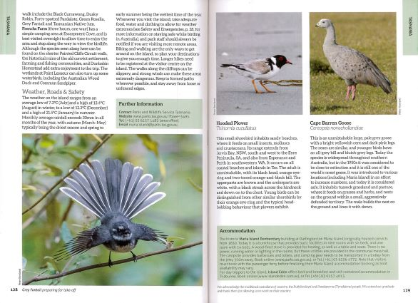 Screenshot of Australia's Birdwatching Megaspots bird book page showing text and images about Maria Island Tasmania