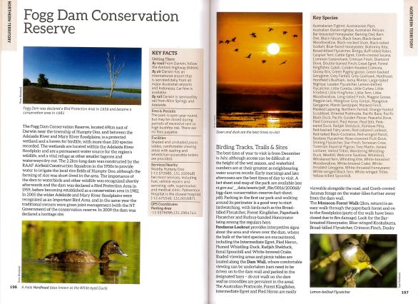Screenshot of Australia's Birdwatching Megaspots bird book page showing text and images about Fogg Dam Northern Territory Australia