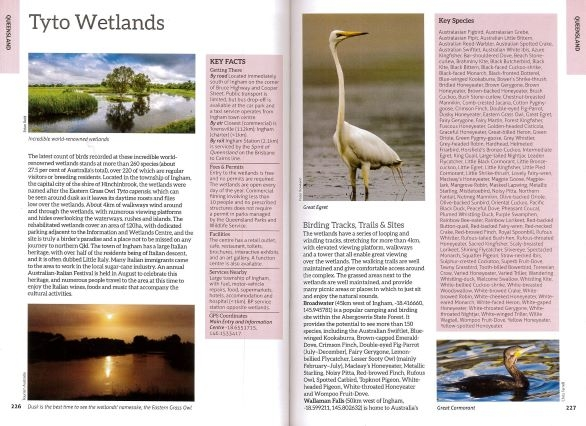 Screenshot of Australia's Birdwatching Megaspots bird book page showing text and images about Tyto Wetlands Queensland Australia